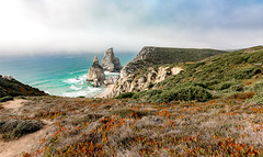 Hidden Sea (LM-Jay) Tags: ocean travel flowers sea beach portugal coast rocks lisbon atlantic hills shore ursa