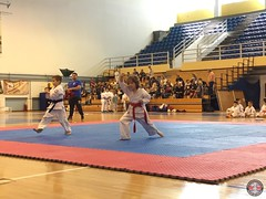 stefanou_15_5_2016_knockdown_74