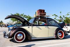 Cars and Coffee (DanGarv) Tags: cars vintage beetle palmbeach carshow volkswagon volkswagonbeetle d810