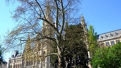 Vienna_City-Hall-3 (rhomboederrippel) Tags: vienna architecture austria cityhall sunny april fujifilm neogothic rathaus citycenter citycentre 2016 neugotik 1stdistrict 1bezirk xe1 rhomboederrippel