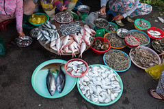 Women are selling seafood at the wet market (Evgeny Ermakov) Tags: life street city travel vacation urban woman fish wet hat asian women asia southeastasia raw vietnamese sitting basket floor market sale traditional culture lifestyle shrimp scene fresh vietnam plastic exotic trading sit seafood destination marketplace local southeast sell trade selling seller salesman trang streetmarket nha ingredient trader nhatrang