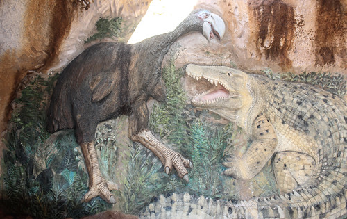 Baru darrowi (Riversleigh Cleaver-headed Crocodile)