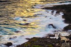 Sunset @ Lanyu   (Jennifer ) Tags: ocean nature sunrise boat taiwan pacificocean    lanyu          sunrising       nikond4s taiwanoffshoreislands