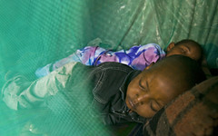 Photo of the week: Children sleeping under a mosquito net in Kenya, protected from the threat of malaria (DFID - UK Department for International Development) Tags: children kenya mosquitos mosquitonet malaria vestergaard bednet permanet worldmalariaday