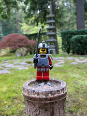 LEGO Collectible Minifigures Series 3 : Samurai Warrior (wiredforlego) Tags: toy lego plastic minifigure cmf 8803