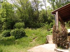Le jardin côté terrasse