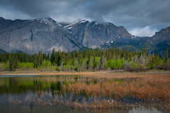 Marvelous Mid Middle Lake Morning in the Mountains (Harvey Roberts images) Tags: water lakes rockymountains bowvalleyexshawareas bowprovincialparkwillowrock