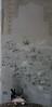 05272012 107 (CONSTRUCTIVE DESTRUCTION) Tags: graffiti streak wb data boxcar urine graff piece whistle tase blower searius listo moniker ftra