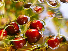 Snorkeling cherry (Isabella Pirastu) Tags: cherry cerise ciliegie ciliegia