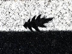 Doppio fossile stradale
