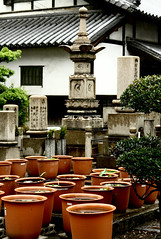 Shitaderamachi 51 (David OMalley) Tags: shitaderamachi osaka   ward japan japanese asia asian oriental orient exotic bustling urban environment busy diverse crowded urbane markets streets lanes alley alleys alleyways alleyway covered covered market modern hip cool sophisticated vastness vast neighborhood neighborhoods central center downtown temple temples buddhist buddhism