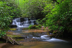 Lower Crow Creek Falls (davidwilliamreed) Tags: county trees nature water creek georgia waterfall rocks long exposure falls crow lower rabun