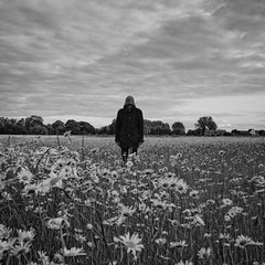 In a shadow world running parallel (martinfowlie) Tags: flowers sky blackandwhite man monochrome field clouds daisies canon hoodie jacket 7d hood 1020mm loner 2012 maximopark standingstill week25 parallelexistence 522012 52weeksthe2012edition weekofjune17 whosthebigdaisy wheniwaswild