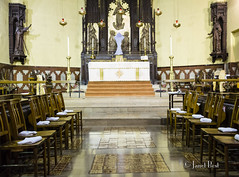 _F6A6366 (redroofmontreal) Tags: easter s mass liturgy maundythursday