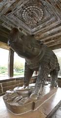 Boar Statue (chdphd) Tags: temple khajuraho varaha varahatemple