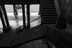 (Ivn Rubn) Tags: light shadow bw detalle detail luz monochrome mxico architecture stairs contrast contraluz arquitectura time places sombra bn lugares rincones contraste instant gloom intimate escaleras contemplation subtle corners tiempo instante penumbra monocromtico ntimo contemplacin cdmx backlightingsutil