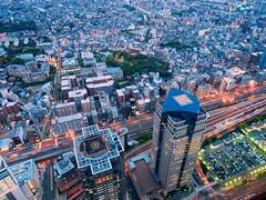 From Above (Ted Tsang) Tags: longexposure travel tower japan skyline night landscape cityscape nightscape olympus  yokohama bluehour kanagawa  minatomirai magichour landmarktower observationdeck  em1 lighttrail       21  1240mmf28