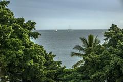 Two sailboats (tatlmt) Tags: ocean france beach sailboat french lagoon southpacific tropical windsurfing newcaledonia noumea ansevata