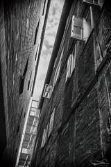 Das Fenster zum Hof (fender66ge) Tags: bw fenster hamburg sw eng fachwerk wenigplatz