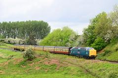 55019 at Eardington. (curly42) Tags: railway napier svr severnvalleyrailway deltic class55 55019 royalhighlandfusilier preserveddieselloco svrdieselgala2016