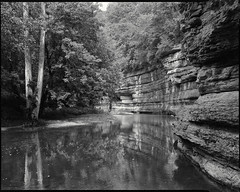 howard's creek, clark co, kentucky (mike thomas) Tags: county bw film beauty creek landscape woods kentucky ky large super 400 clark 4x5 format rodinal 120mm schneider fomapan symmar arcaswiss