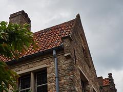 Rooftop in Damme (wellingtonandsqueak) Tags: belgium c1 damme