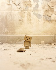 So tell me where shall I go? To the left, where nothing's right? Or to the right, where nothing's left? (karyll ) Tags: danbo danboard