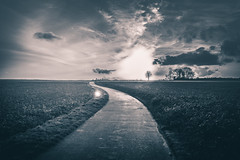 I no longer need to move forward (Kevin STRAGLIATI) Tags: road light sunset sky bw sun sunlight france tree nature clouds landscape path horizon country happiness flare fields campaign