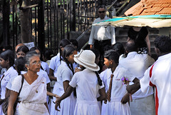 Sri Lankan (pontfire) Tags: srilanka srilankan asie asia woman women girl girls fille filles smile potrait people pontfire ceylan ceylon femme femmes school color couleur fulcolor multicolor kandy sri lankā śri lanka çri śrī laṅkā ශ්රී ලංකා illankai இலங்கை