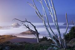 sutro nights (eb78) Tags: sf sanfrancisco sutrobaths longexposure nightphotography ca california explore landscape npy