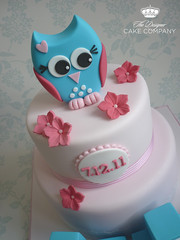 Owl cake topper (The Designer Cake Company) Tags: pink baby lace owl christening buildingblocks