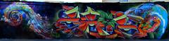 Drk Zade Salazart. (COLOR IMPOSIBLE CREW) Tags: chile color hojas graffiti crew 2012 camaleon zade talca imposible drk fros salazart