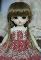 new makeup (橘@Benan) Tags: cookie bjd custom ae