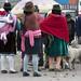 Donne indigene in attesa di contrattare i capi di bestiame (Mercado indigeno di Saquisilí)