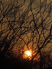 That Burn (DeeAshley) Tags: sunset red sky sun sol digital canon landscape atardecer fire photography photo dallas interesting rojo pretty texas foto dusk paisaje cielo dfw fires naranja fortworth interesante unedited g11 colleyville 2011 wildfires noeditado gseries fotografia gogoloopie deeashley dionnehartnett