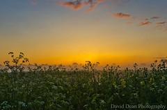 Dawns Golden Glow (jactoll) Tags: uk england mist rural sunrise river landscape dawn golden countryside spring nikon glow worcestershire nikkor avon vr 2012 worcs eckington 1685mm d7000 jactoll ashammeadow