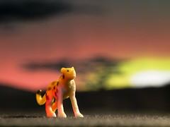 Gepardo Africano (Mr Munduq) Tags: africa sunset animal toy atardecer leopardo little small olympus leopard cheetah product zuiko miniatura juguete e5 producto áfrica guepardo zd50200mm