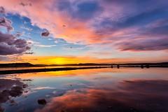 Los colores de Petrola (Jose Casielles) Tags: color luz agua colores nubes puestadesol laguna puesta mosquitos horizonte reflejos yecla petrola fotografiasjcasielles