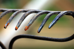 Through the Soul (GollyGforce) Tags: lines metal rust dof rake claw memory tines