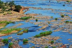 Olifants river (anacm.silva) Tags: africa rio river southafrica nikon krugernationalpark krugerpark kruger olifants áfrica áfricadosul olifantscamp olifantsriver anasilva nikond40x