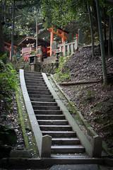 Stairway to... (veropie) Tags: travel japan temple japanese kyoto asia inari unescoworldheritagesite unesco worldheritagesite traveller temples traveling torii fushimiinari fushimi eastasia kyotoprefecture notatourist