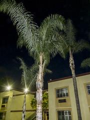 DSCF7913 (kndynt2099) Tags: beach inn long near comfort suites conv ctr