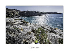 #DH680 (Didier Hannot Photography) Tags: blue trees sea mer sunlight nature landscape seaside brittany rocks quiet turquoise peaceful tranquility bretagne falls serenity coastline ecstasy falaises contemplation rverie reverie finistre extase capsizun beuzec didierhannotphotography pointedebeuzec