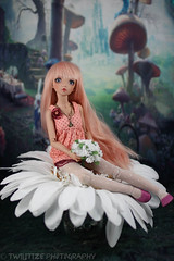 Hailey's Day Out (twilitize) Tags: camera girls cute art girl beautiful beauty canon cool doll dolls good girly awesome adorable cutie adventure fantasy bjd dolly magical darling fairyland daring dollphotography canonphotography minifee dollfairyland bjdphotography