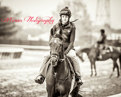 Casse Trainee (EASY GOER) Tags: horse sports canon track belmont racing 5d races thoroughbred equine markiii