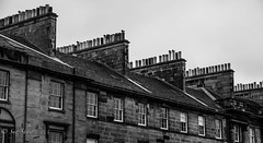 Chimney pot, pots.....and more pots!! (Sue_Shaw) Tags: chimney blackandwhite bw monochrome architecture canon pattern property symmetry rows canoneos leadinglines chimneypot canon60d