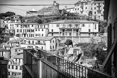Riomaggiore (gilbertotphotography.blogspot.com) Tags: life street people italy photography strada italia gente liguria streetphotography cinqueterre fotografia vernazza monterosso vita riomaggiore laspezia 5terre fotodistrada
