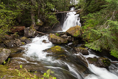 Elliott Creek (dmitry.antipov) Tags: washington 6d 241054lis