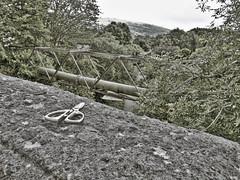 Forgotten Sissors (twinbowlers) Tags: blackandwhite fun canonpowershotg12