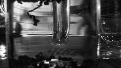 goddess brewing -LRM_20160301_123653.jpg (roland) Tags: ca canada vancouver brewing cafe tea britishcolumbia goddess revolver gastown revolvercoffee